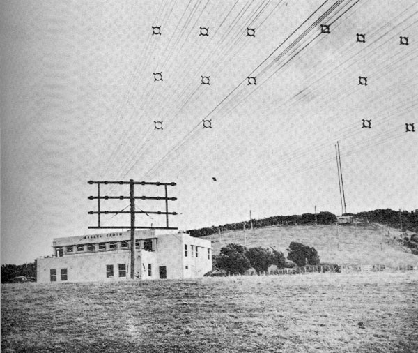Feedlines from the new vee aerials at Makara Radio receiving station in 1960