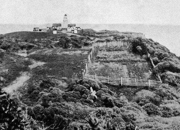 Puysegur Point. Otago Witness, 9 August 1916