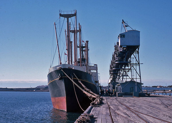 Kaimiro loading grain in Walaroo, Australia in Feb or Mar 1963