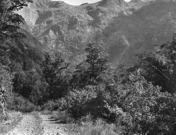 The road to Milford Sound c1952