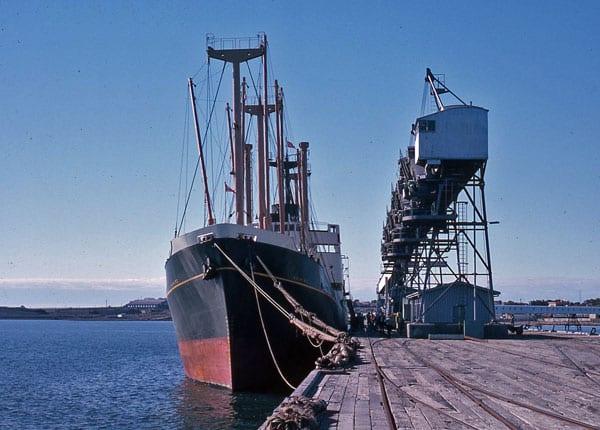 Kaimiro loading grain in Walaroo, Australia in Feb or Mar 1963