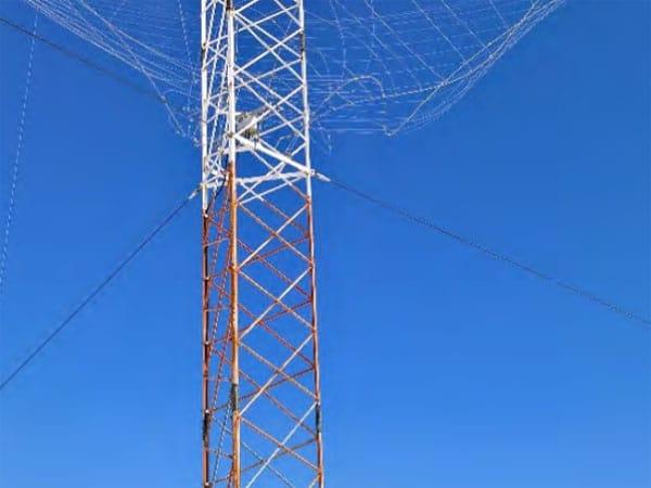 The ice-damaged spiracone antenna at Taupo Radio's Matea site
