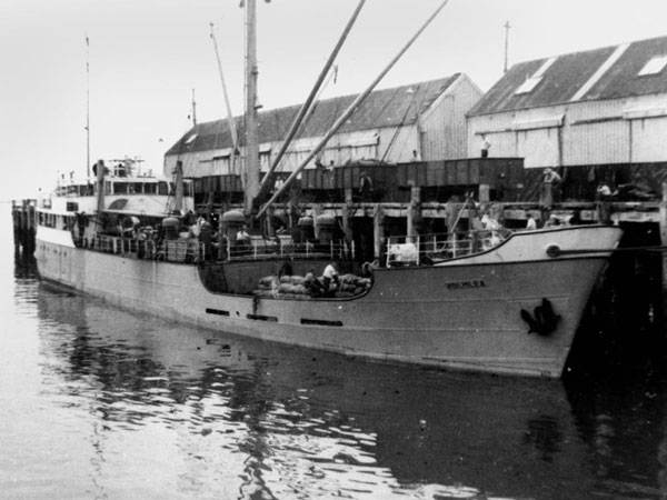 Holmlea at New Plymouth, date unknown